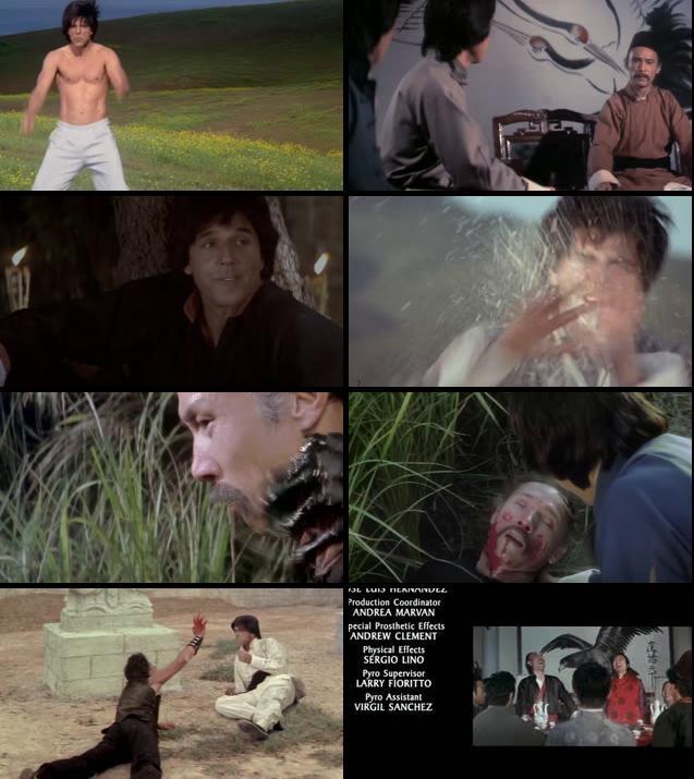 Kung Pow Enter The Fist 2002 UNCUT Dual Audio Hindi 720p
