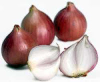 Benefits Shallots or scallions