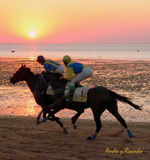 Carreras de caballos en la playa con la puesta de sol