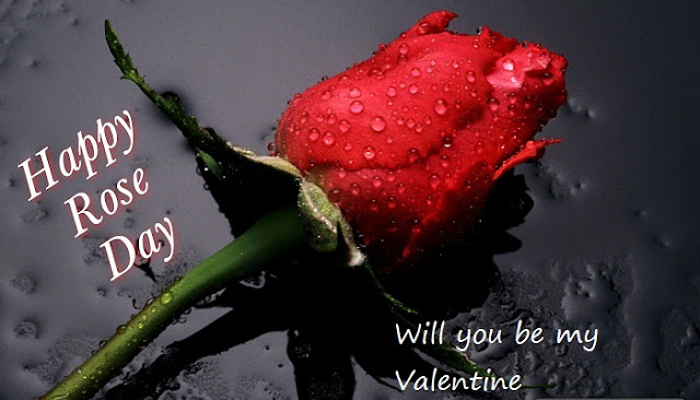 rose day sms images, rose day messages images