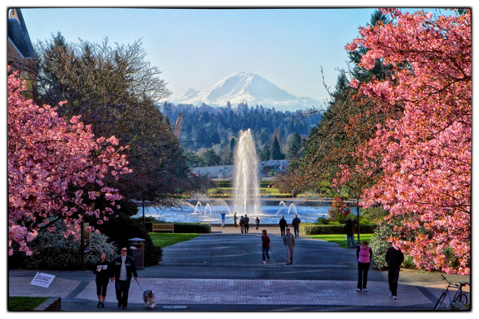 Cliff Mass Weather and Climate Blog: Seattle and Western ...