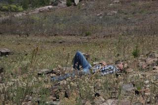 En el Sueño REM quedamos profundamente dormidos en cualquier entorno