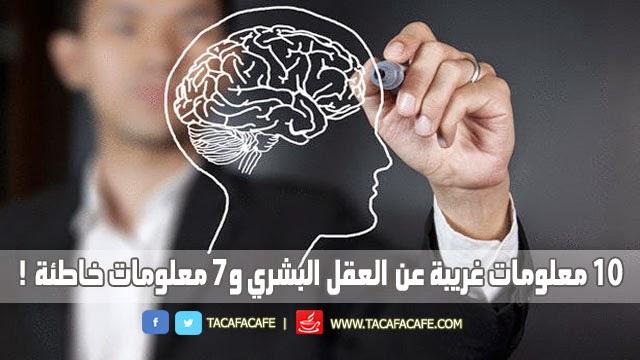 10 معلومات غريبة عن العقل البشري و7 معلومات خاطئة!