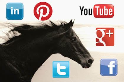 Redes sociales para el negocio del caballo