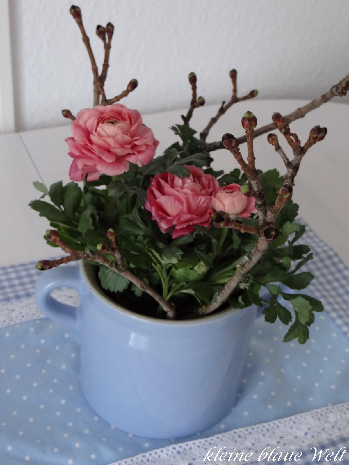 kleine blaue welt friday flowerday 11. Black Bedroom Furniture Sets. Home Design Ideas