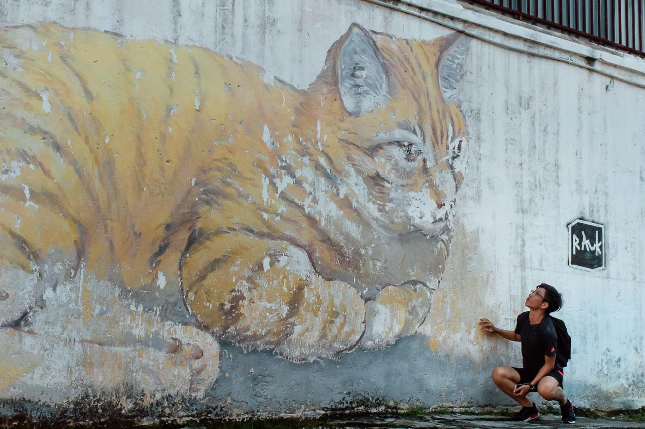 cat street art graffiti in georgetown penang malaysia