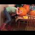 hillarious video, Teenage girl gets her head stuck in massive pumpkin