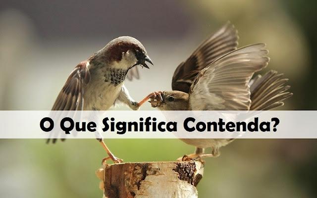 O Que Significa Contenda? Uma Definição Bíblica de Contenda