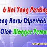 6 Hal Penting Yang Harus Diperhatikan Oleh Blogger Pemula