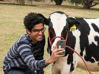 How to Participate in Selfie with cow contest ?