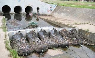 Red de drenaje con malla como solución para los residuos plásticos