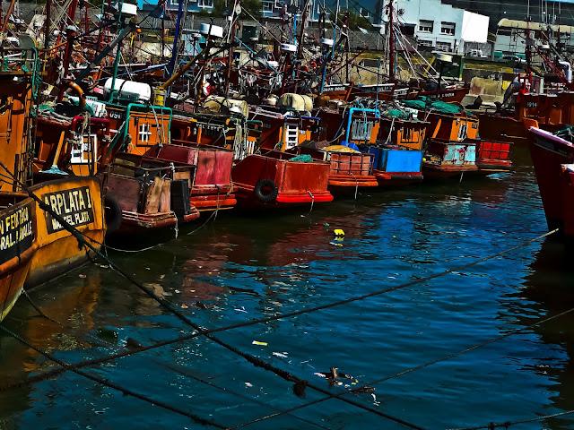 Foto barcos amarrados en muelle