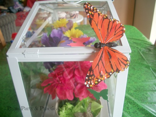 Butterfly House Centerpiece at Pams Party and Practical Tips