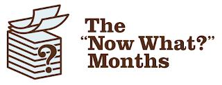 ahora qué meses nanowrimo