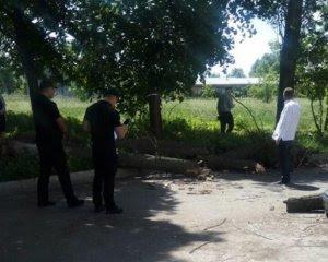 Чотирьох дітей привалило деревом
