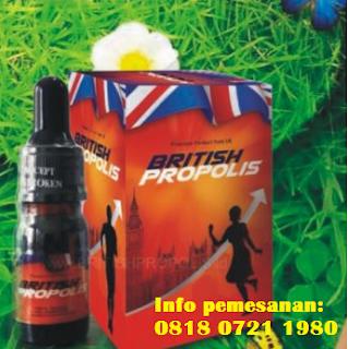 jual propolis Asli, jual Propolis, jual Propolis British, Propolis adalah