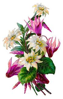 flower floral botanical clipart image printable crafting shabby tattered download