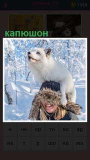на голове на капюшоне человека устроилась собака зимой