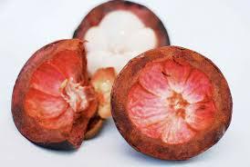 Obat Bronkitis dengan Kulit Manggis