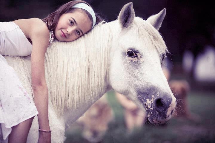 Caballo blanco con una niña