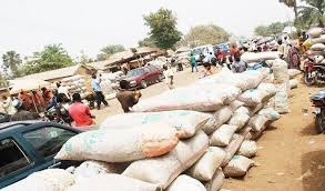 FG Calls for Lifting of Suspension on Nigeria's Cocoa Exports to US Market 1