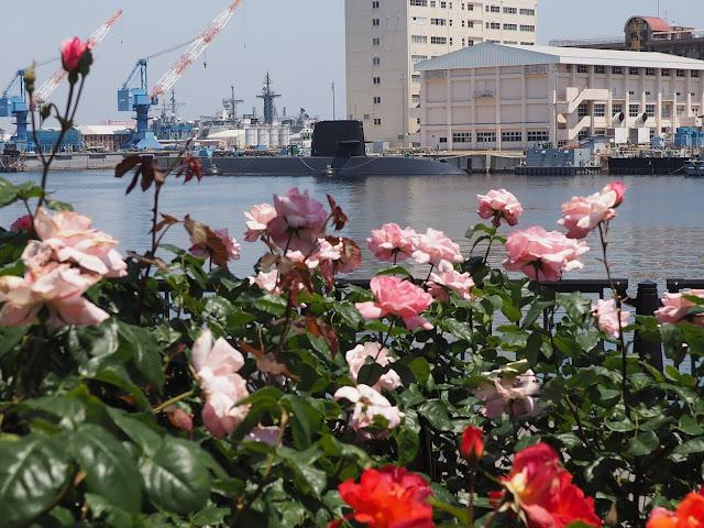 横須賀 ヴェルニー公園 バラ 潜水艦