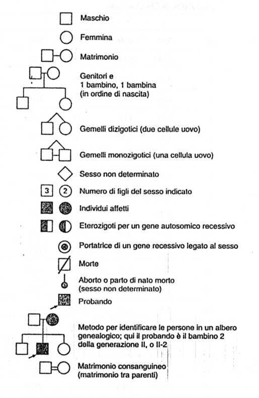 Ben noto Science For Passion: Alberi genealogici: i simboli TA64
