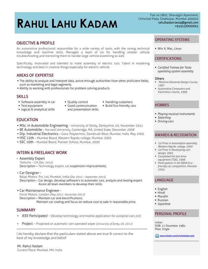 Hybrid resume format