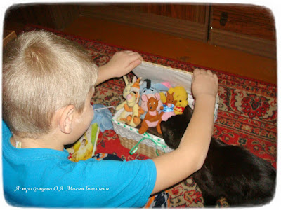 КОАПП пальчиковый театр, игрушки для животных