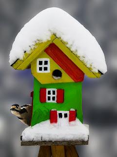 buntes Vogelhaus im Winter