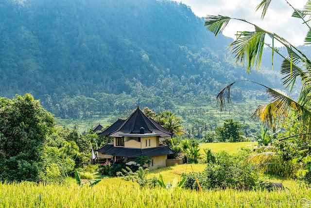 Rizières de Sidemen - Bali