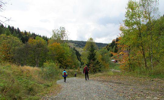 Dolina Wierchomlanki.