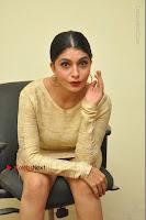 Actress Pooja Roshan Stills in Golden Short Dress at Box Movie Audio Launch  0082.JPG