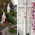 ARGENTINA: 3 templos católicos profanados com pichações abortistas