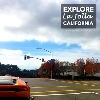 Buy Your Dream Home With Team SchuCo of La Jolla