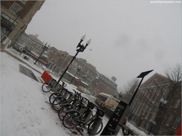 Zona de Harvard Square, Cambridge durante la Tormenta Greyson