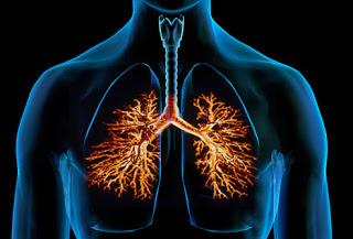 penyakit pneumonia ternyata sudah ada sejak ratusan tahun lalu