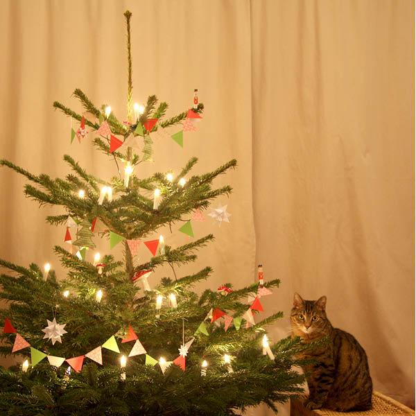 http://aentschie.blogspot.de/2013/12/mein-diy-weihnachtsbaum.html