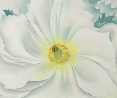flores-grandes-dimensiones-disenos