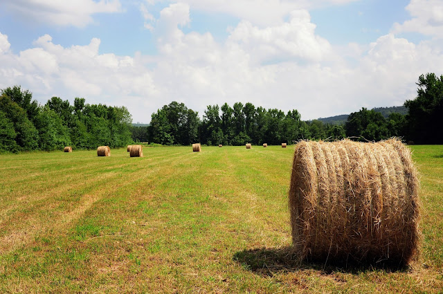 Hay Bales Chickasaw County Hickory Ridge Studio