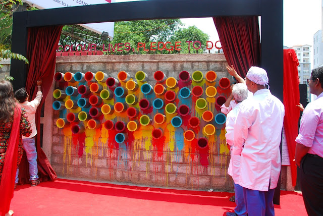 Unveiling the Wall of Colours