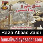 http://www.humaliwalayazadar.com/2015/10/syed-raza-abbas-zaidi-nohay-2016.html