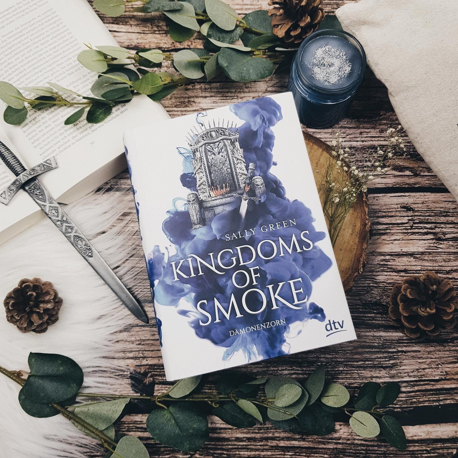 Bücherblog. Rezension. Buchcover. Kingdoms of Smoke - Dämonenzorn (Bd.2)  von Sally Green. Fantasy, Jugendbuch. dtv Verlag. ©prettytigerbuch