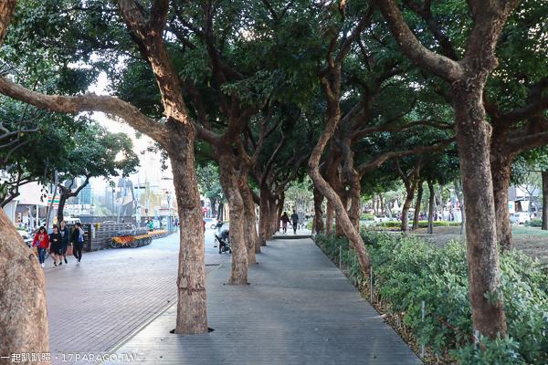 《台中.西區》台中市民廣場|陽光草坪|親子景點|美好書席|遛小孩和毛小孩好去處