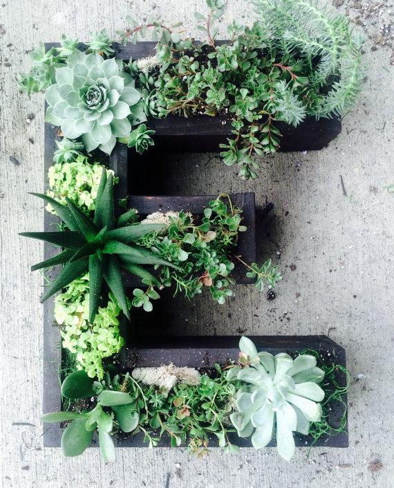 Jardines verticales con suculentas y letras c sas de for Plantas usadas para jardines verticales