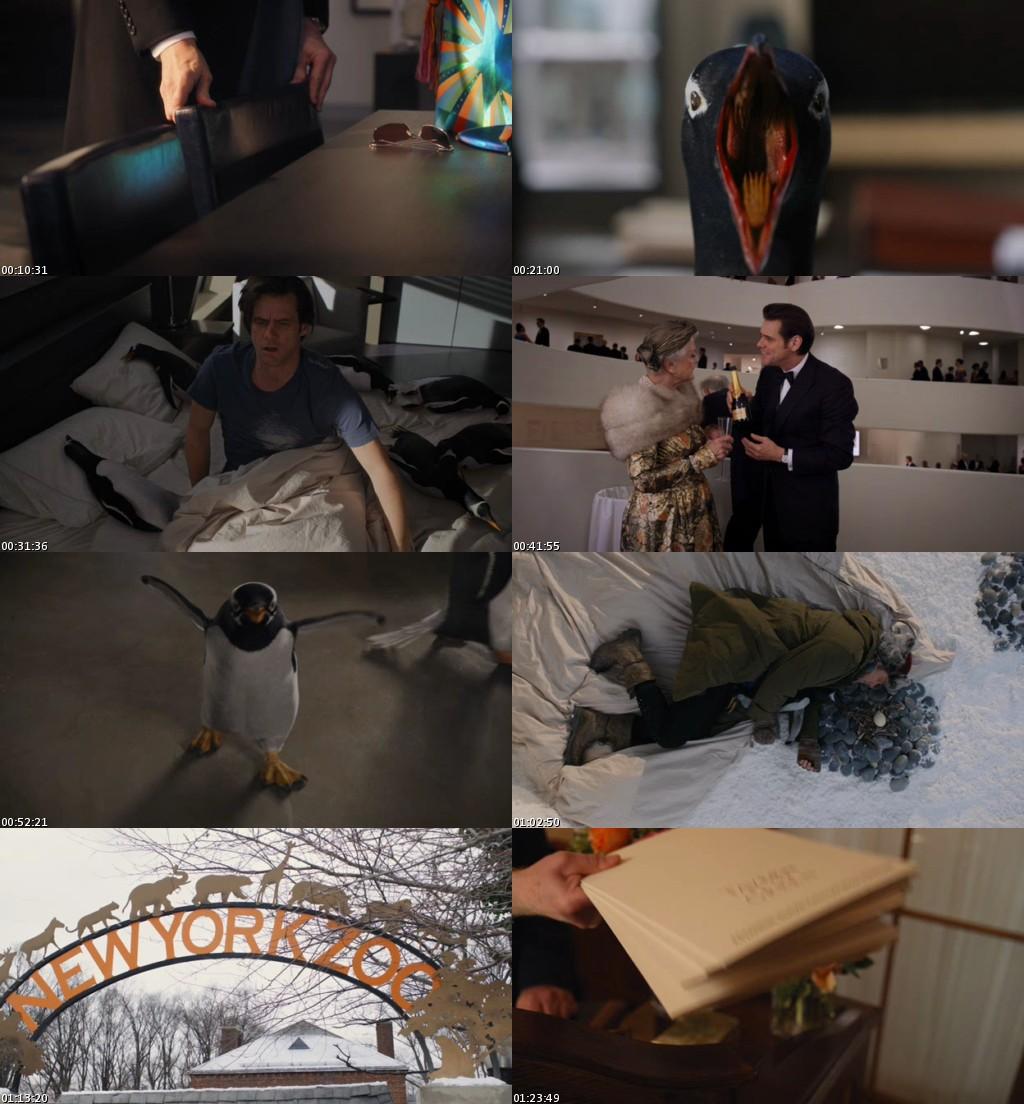 Los pingüinos del Sr. Poper (2011) [DVDRip] [Latino]