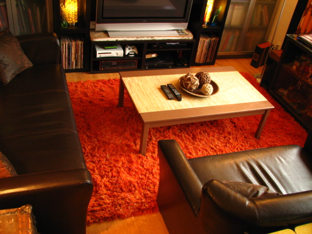 Interior Design For Carpeted Apartments