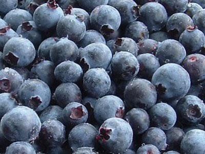巴西莓功效