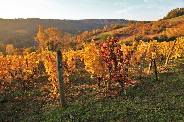 Vignes et falaises de Cormot, Bourgogne, (C) Greg Clouzeau