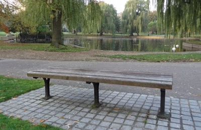 Public Garden Good Will Hunting Bench